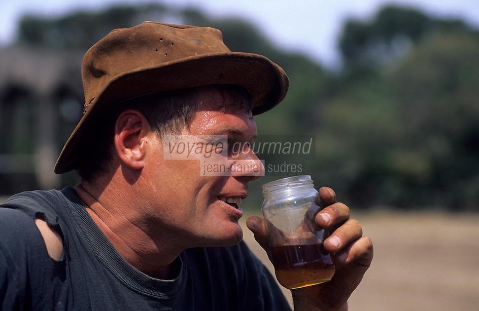 Océanie/Australie/Australie Méridionale/Ile Kangaroo/Emu Ridge : Distillerie d'huile d'eucalyptus dans un ancien bureau de poste - Larry Turner