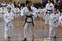 Coloured-belt gradings #1