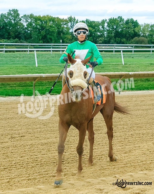 Fearsome winning at Delaware Park on 9/25/15