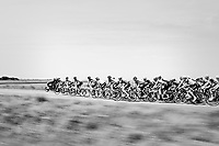 Peloton speeding along<br /> <br /> Ster ZLM Tour (2.1)<br /> Stage 2: Tholen &gt; Hoogerheide (186.8km)