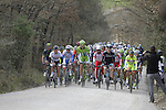 The peloton tackle the 1st sector of strade at Pian del Lago during the 2014 Strade Bianche race over the white dusty gravel roads of Tuscany running from San Gimignano to Siena, Italy. 8th March 2014.<br /> Picture: Eoin Clarke www.newsfile.ie