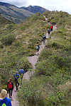 SBSJ Group Hiking, Sendero las orquideas (orchid trail)
