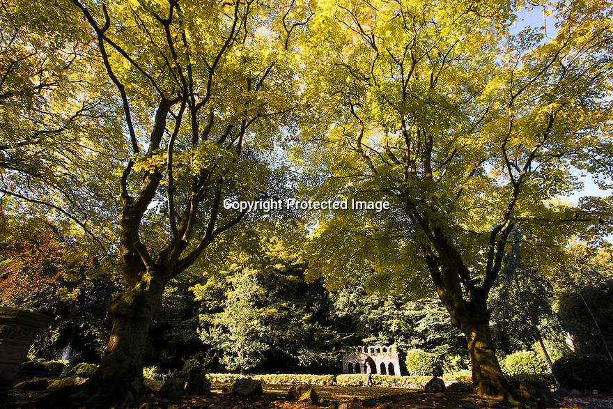 25/09/1<br /> <br /> With a weekend of good weather forecast, the spectacular autumn colours surrounding Matlock Bath in the Derbyshire Peak District are illuminated by bright sunlight this morning.<br /> <br /> All Rights Reserved: F Stop Press Ltd. +44(0)1335 418365   +44 (0)7765 242650 www.fstoppress.com