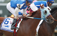 September 3, 2012. Traffic Light, John Bisono up, races near the front of the field in the Smarty Jones Stakes. He finished second. Easter Gift, ridden by Kendrick Carmouche and trained by Nick Zito, wins the grade III Smarty Jones Stakes at Parx Racing. (Joan Fairman Kanes/Eclipse Sportswire)