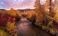 Autumn Evening on New Lane Road. We drive, walk our dogs, or ride bikes past this view almost daily and this may be the first time I've photographed it. Fall colors are just past peak along the upper Weber River. Grateful to live here and have kind friends and neighbors to share this with... and thanks for not honking at me as I stood on the bridge with my tripod last night :) Near Oakley, Utah.