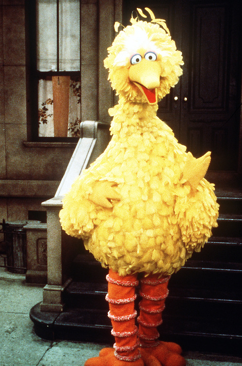 08/08/97.BIG BIRD.COPYRIGHT 1997 CTW SESAME STREET MUPPETS.COPYRIGHT 1997 HENSON PRODUCTIONS.CQ free to use. Do not resell. Image must carry both copyrights.