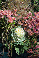 Ornamental Kale Pigeon White with Chrysanthemum & Ornamental Grass in upscale wooden container on patio pavers