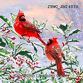 Marcello, CHRISTMAS ANIMALS, WEIHNACHTEN TIERE, NAVIDAD ANIMALES, paintings+++++,ITMCXM1487A,#xa# ,cardinal,cardinals