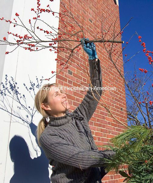 MIDDLEBURY, CT. 29 November 2010-112910SV04--Sallie Smith of the Middlebury Garden Club adds some winterberries to the planters outside Town Hall in Middlebury Monday. The garden clubs decorates around town as well as the tree on the green.<br /> Steven Valenti Republican-American