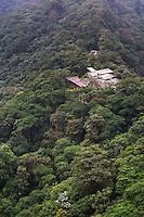 Ecuador. Mashpi Lodge, Choco Cloud Forest, a rainforest in the Pichincha Province of Ecuador, South America