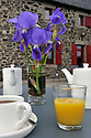 27/04/11 - LAC DU PECHE - CANTAL - FRANCE - Ecolodge du Peche, french quality guest house in Auvergne - Photo Jerome CHABANNE