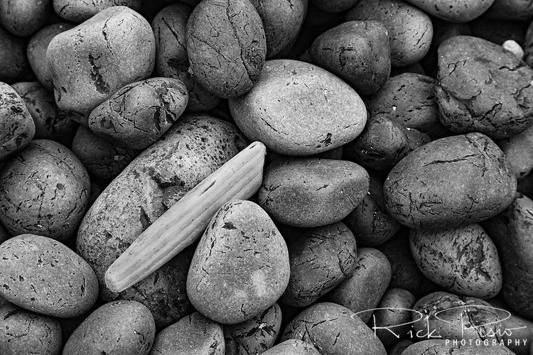A piece of driftwood lies among the cobblestones on Cobble Beach near the Yaquina Head Lighthouse north of Newport on Oregon's coast.