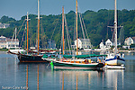 Boats and homes on the Mystic River, Mystic, CT, USA