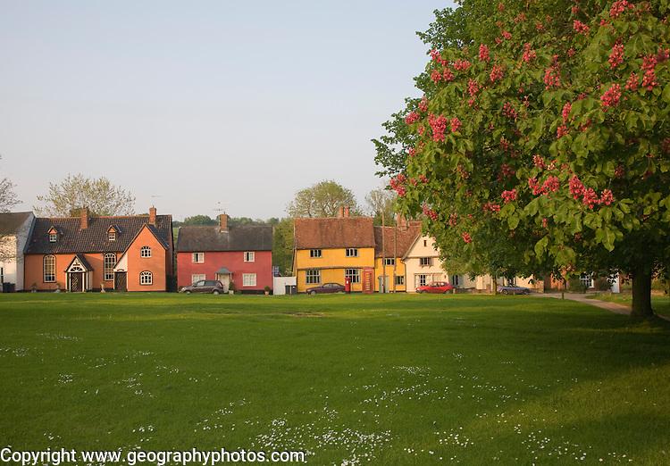 Houses around the village green, Hartest, Suffolk, England
