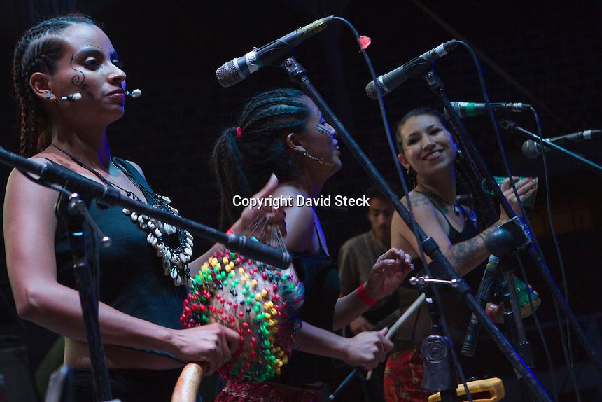 Quer&eacute;taro, Qro. 11 de Junio de 2015.-Presentaci&oacute;n de la &quot;La Democr&aacute;tica Afrobeat&quot; en el &quot;Rasta Festival&quot;  que tuvo lugar en la Plaza de Toros Santa Mar&iacute;a.<br />   <br /> Foto: David Steck Obture