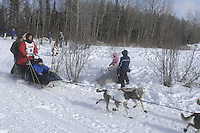 2008, Iditarod, Start, Anchorage, Sebastian, Schnuelle.