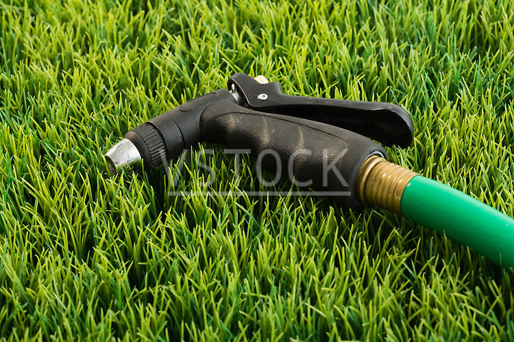 Garden hose on grass