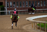 LOUISVILLE, KENTUCKY - MAY 01: Master Fencer with Julien Leparoux up prepares for the Kentucky Derby at Churchill Downs in Louisville, Kentucky on May 01, 2019. Evers/Eclipse Sportswire/CSM