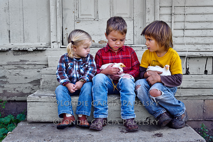Kids playing with the chicks, San Luis Obispo, California