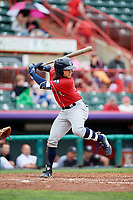 New Hampshire Fisher Cats shortstop Bo Bichette (5) at bat during a game against the Erie SeaWolves on June 20, 2018 at UPMC Park in Erie, Pennsylvania.  New Hampshire defeated Erie 10-9.  (Mike Janes/Four Seam Images)