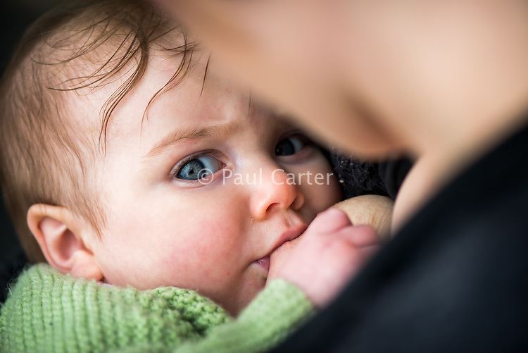 Close-up of a baby breastfeeding outside.  The baby is looking at the camera.<br /> <br /> Image from the &quot;We Do It In Public&quot; documentary photography project collection: <br />  www.breastfeedinginpublic.co.uk<br /> <br /> Dorset, England, UK<br /> 17/04/2013