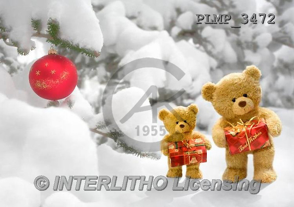 Marek, CHRISTMAS ANIMALS, WEIHNACHTEN TIERE, NAVIDAD ANIMALES, teddies, photos+++++,PLMP3472,#Xa# in snow,outsite,