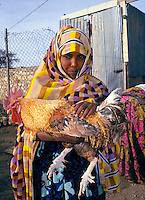 A young Somali girl holds her pet chicken. She lives on a farm. Somalia Africa.