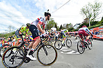 The peloton including Rory Sutherland (AUS) UAE Team Emirates on the first ascent of Mur de Huy during the 83rd edition of La Fl&egrave;che Wallonne 2019, running 195km from Ans to Huy, Belgium. 24th April 2019<br /> Picture: ASO/Gautier Demouveaux | Cyclefile<br /> All photos usage must carry mandatory copyright credit (&copy; Cyclefile | ASO/Gautier Demouveaux)