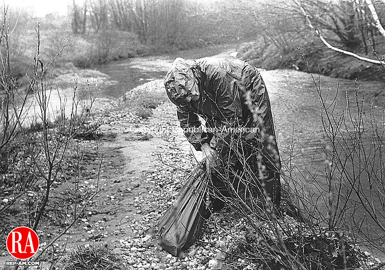 April 22, 1990 - PLYMOUTH - A Litchfield Hills Audubon Society member helps clean up the banks of the Pequabuck River in celebration of Earth Day. Republican-American Archives