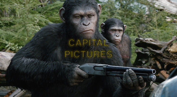 Caesar (Andy Serkis)<br /> in Dawn of the Planet of the Apes (2014) <br /> *Filmstill - Editorial Use Only*<br /> CAP/FB<br /> Image supplied by Capital Pictures