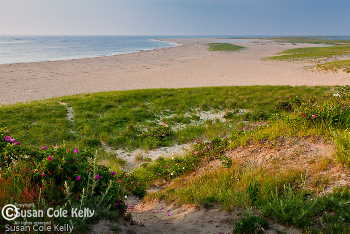 A summer morning in Chatham Harbor, Chatham, Cape Cod, MA, USA