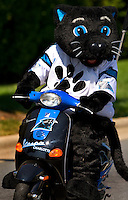 09/16/07 :  Sir Purr, the popular mascot of the Carolina Panthers, arrives for a game. The anthropomorphized panther, wears a Panthers football jersey #00.