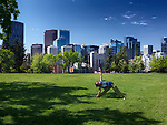 Young woman practicing Yoga in Sunnyside Bank Park on a sunny summer day with Calgary city downtown skyline in the background. Calgary, Alberta, Canada 2017.