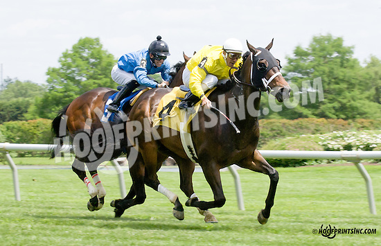 Sky Above winning at Delaware Park racetrack on 5/31/14