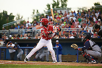 Batavia Muckdogs shortstop Samuel Castro (25) at bat in front of catcher Ali Sanchez and umpire Dane Ponczak during a game against the Brooklyn Cyclones on July 4, 2016 at Dwyer Stadium in Batavia, New York.  Brooklyn defeated Batavia 5-1.  (Mike Janes/Four Seam Images)