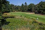 Valkenswaard  -  hole 17 ,  Eindhovensche Golf Club.   COPYRIGHT KOEN SUYK