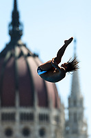 Picture by Rogan Thomson/SWpix.com - 30/07/2017 - High Diving - Fina World Championships 2017 -  Batthyany Ter, Budapest, Hungary - Viktar Maslouski of Belarus in action during the Final of the Men's High Dive competition.