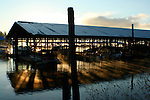 Sunlight reflected through the marina stalls as mist rises on Lake Coeur D Alene
