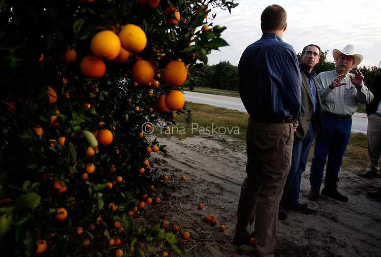 U.S. Presidential hopeful Mike Huckabee (R-AR) tours the Story Family Orange Grove with growers from Florida Citrus Mutual in South Lake Wales, Florida, on Saturday, January 26, 2008. (Photo by: Yana Paskova for The New York Times)..Assignment ID: 30055282P..                                 ...........