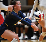 Althoff's Claire Franke bumps the ball. Edwardsville defeated Althoff in a Class 4A volleyball sectional semifinal at O'Fallon HS in O'Fallon, IL on November 4, 2019.<br /> Tim Vizer/Special to STLhighschoolsports.com