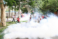 Belo Horizonte_MG, Brasil...Gas lacrimogenio durante a manifestacao do encontro de movimentos socias contra a 47a reuniao anual do BID...The tear gas during the social movements manifestation against the 47th annual meeting of the BID...Foto: LEO DRUMOND / NITRO.