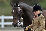 Class 2. Senior. In-hand. Showing. Brook Farm Training Centre. Essex. UK. 09/09/2018. ~ MANDATORY Credit Garry Bowden/Sportinpictures - NO UNAUTHORISED USE - 07837 394578