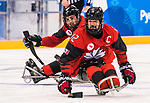 PyeongChang 15/3/2018 - Greg Westlake (#12), of Oakville, ON, and Dominic Cozzolino (#19), of Mississauga, ON, in action as Canada takes on Korea in semifinal hockey action at the Gangneung Hockey Centre during the 2018 Winter Paralympic Games in Pyeongchang, Korea. Photo: Dave Holland/Canadian Paralympic Committee