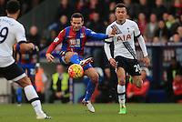 Crystal Palace vs Tottenham Hotspur 23-01-16
