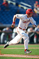 Ball State Cardinals Alex Maloney (6) runs to first base during a game against the Louisville Cardinals on February 19, 2017 at Spectrum Field in Clearwater, Florida.  Louisville defeated Ball State 10-4.  (Mike Janes/Four Seam Images)