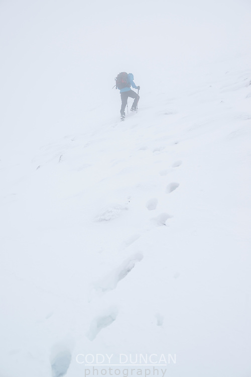 Hiker in winter conditions hiking through deep snow towards summit of Schneibstein (2276 m),  Hagengebirge, Berchtesgaden Alps, Germany - Austria