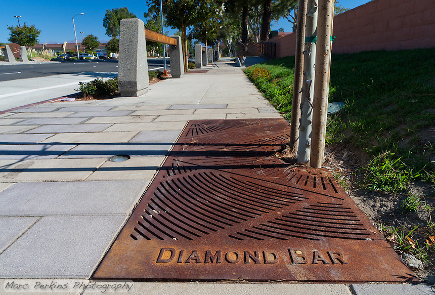 "Iron tree grates form the base of most of the trees planted for the Grand Avenue Beautification project.  This one has the wooden-beam parkway motif in the background. This was part of the 2015 rebuild of the Grand Avenue and Diamond Bar Boulevard intersection for Diamond Bar's 2015 ""Grand Avenue Beautification"" project, landscape architecture for the project was by David Volz Design."