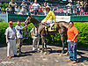 Winnie Bay Go winning at Delaware Park on 5/23/15