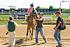 Sean Jones unsaddling Cadillac Rose at Delaware Park on 9/23/15