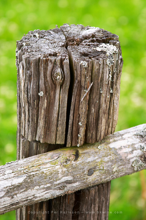 An old weather worn wooden fence pole. Smaland region. Sweden, Europe.